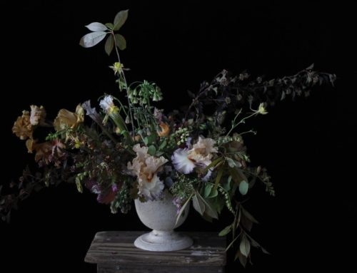 OREGON FLOWER DREAMS | LITTLE FLOWER SCHOOL